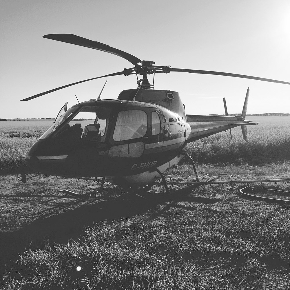 AS350-D